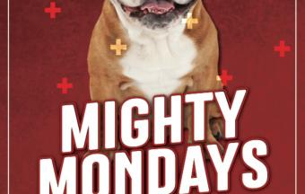 Mighty Mondays